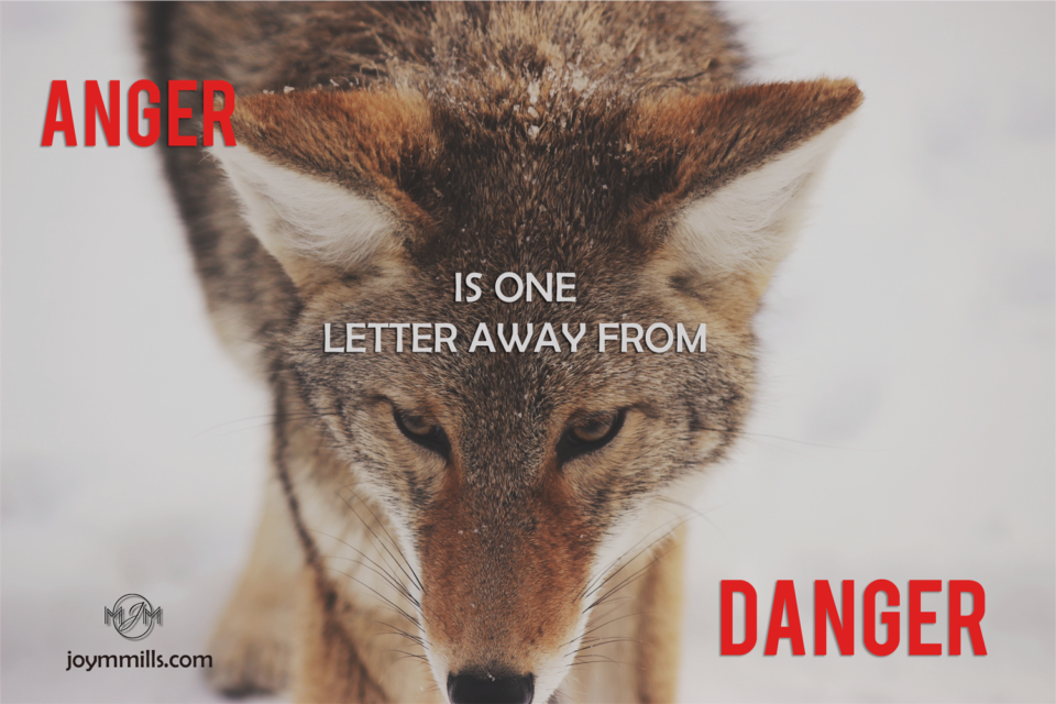 Anger is one letter away..wolf~anger