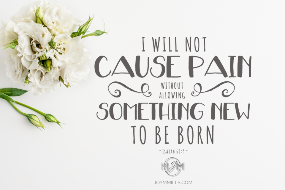 I-WILL-NOT-CAUSE-PAIN~SOULLUTIONS-IMAGE-1